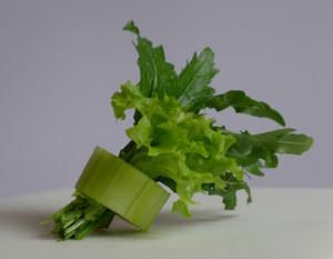 NPS Salat in Gurkenring